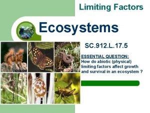 Limiting Factors Ecosystems SC 912 L 17 5