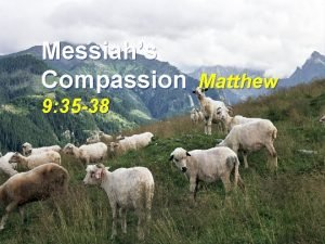 Messiahs Compassion Matthew 9 35 38 Compassion n