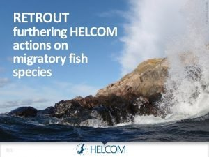 RETROUT furthering HELCOM actions on migratory fish species