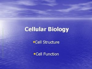 Cellular Biology Cell Structure Cell Function History of