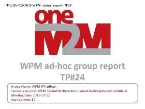 TP2016 0190 R 01 WPMstatusreportTP 24 WPM adhoc