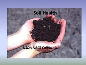 Soil Health USDA NRCS California What is Soil