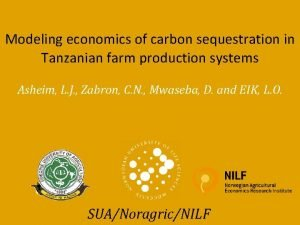 Modeling economics of carbon sequestration in Tanzanian farm