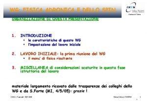 WG FISICA ADRONICA E DELLO SPIN Sezione di