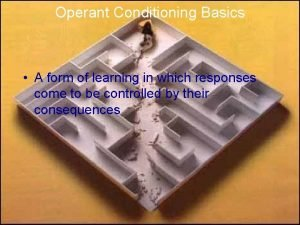 Operant Conditioning Basics A form of learning in