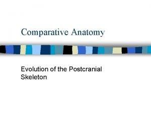 Comparative Anatomy Evolution of the Postcranial Skeleton Evolution