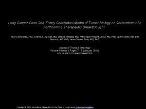 Lung Cancer Stem Cell Fancy Conceptual Model of
