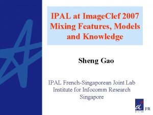 IPAL at Image Clef 2007 Mixing Features Models