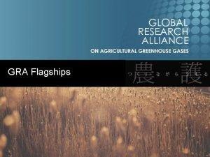 GRA Flagships GRA Flagships Strategic Plan 2016 2020