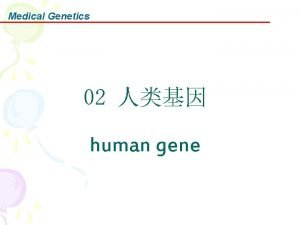 Medical Genetics 02 human gene Medical Genetics Genes