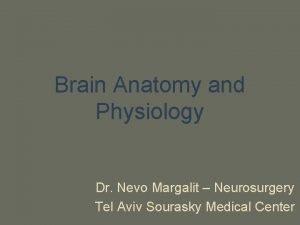 Brain Anatomy and Physiology Dr Nevo Margalit Neurosurgery
