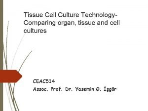 Tissue Cell Culture Technology Comparing organ tissue and