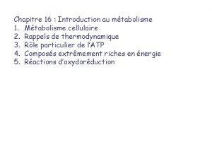 Chapitre 16 Introduction au mtabolisme 1 Mtabolisme cellulaire