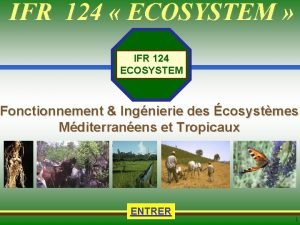 IFR 124 ECOSYSTEM Touches actives Accueil IFR 124