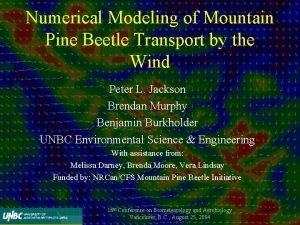 Numerical Modeling of Mountain Pine Beetle Transport by