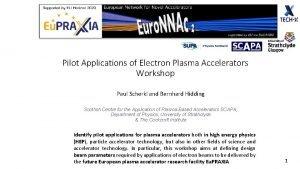 Pilot Applications of Electron Plasma Accelerators Workshop Paul