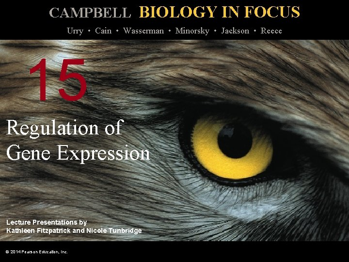 CAMPBELL BIOLOGY IN FOCUS Urry Cain Wasserman Minorsky