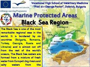 Vocational High School of Veterinary Medicine Prof dr