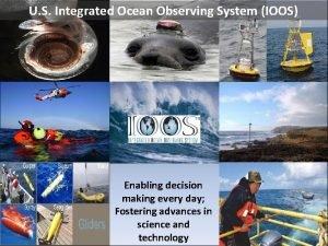 U S Integrated Ocean Observing System IOOS Enabling