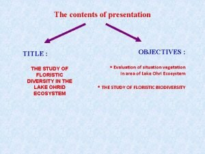 The contents of presentation TITLE THE STUDY OF