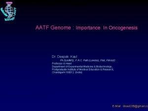 AATF Genome Importance In Oncogenesis AATF Genome Importance