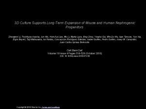 3 D Culture Supports LongTerm Expansion of Mouse