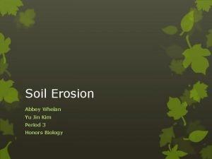 Soil Erosion Abbey Whelan Yu Jin Kim Period