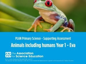 1 PLAN Primary Science Supporting Assessment PLAN Primary