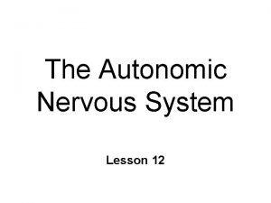 The Autonomic Nervous System Lesson 12 Autonomic N