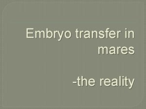 Embryo transfer in mares the reality Clones Why