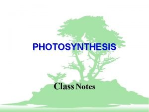 PHOTOSYNTHESIS Class Notes PHOTOSYNTHESIS Photosynthesis is ability of
