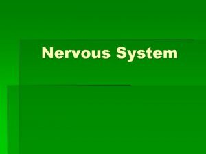Nervous System Functions and Divisions of the nervous