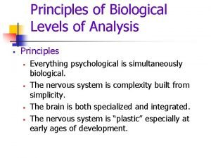 Principles of Biological Levels of Analysis Principles Everything
