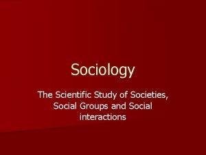Sociology The Scientific Study of Societies Social Groups