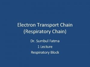 Electron Transport Chain Respiratory Chain Dr Sumbul Fatma