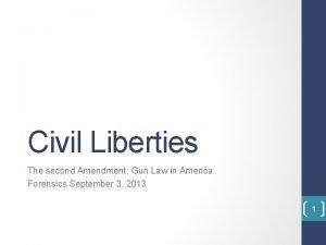Civil Liberties The second Amendment Gun Law in