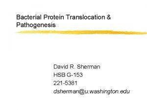 Bacterial Protein Translocation Pathogenesis David R Sherman HSB