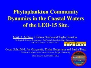 Phytoplankton Community Dynamics in the Coastal Waters of
