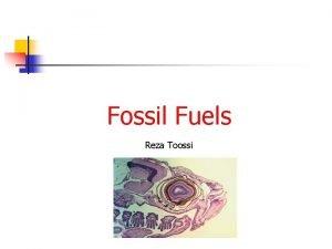 Fossil Fuels Reza Toossi Carbon Cycle Calorific Values