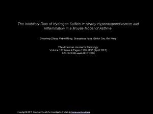 The Inhibitory Role of Hydrogen Sulfide in Airway