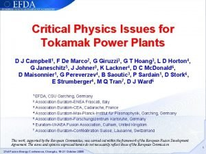 Critical Physics Issues for Tokamak Power Plants D