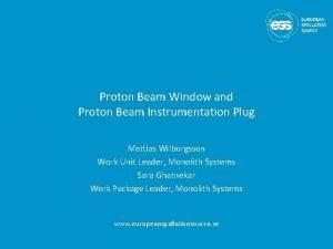 Proton Beam Window and Proton Beam Instrumentation Plug