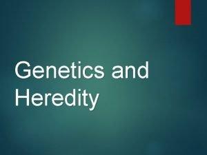 Genetics and Heredity What is Genetics the study