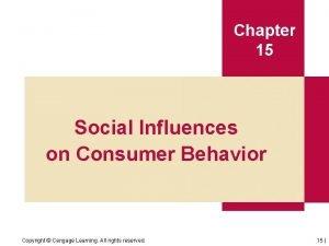 Chapter 15 Social Influences on Consumer Behavior Copyright