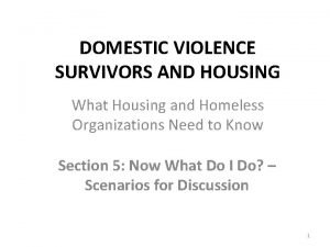DOMESTIC VIOLENCE SURVIVORS AND HOUSING What Housing and