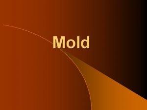 Mold Molda growing problem Introduction l Mold Litigation