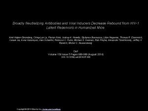 Broadly Neutralizing Antibodies and Viral Inducers Decrease Rebound