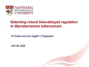 Detecting robust timedelayed regulation in Mycobacterium tuberculosis Iti