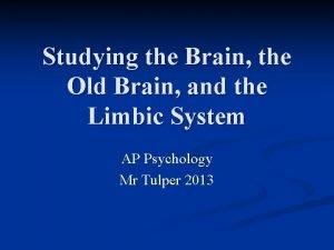 Studying the Brain the Old Brain and the