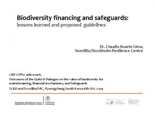 Biodiversity financing and safeguards lessons learned and proposed